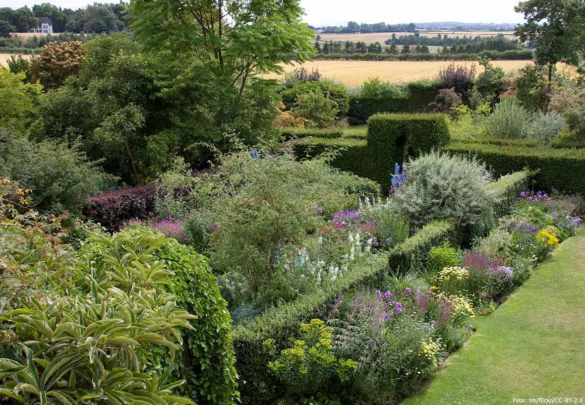 buskar till trädgård
